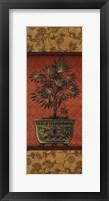 Tropical Plants III Framed Print