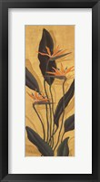 Framed Bird Of Paradise - Mini