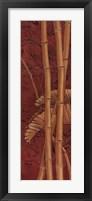 Bamboo Grove II Framed Print