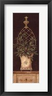 Framed Olive Topiary I - Mini