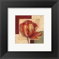 Bella Donna I - Petite Framed Print