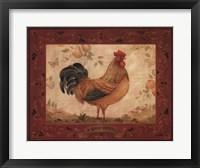 Gallo Dorato Framed Print