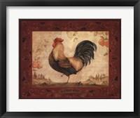 Gallo Nero Framed Print