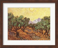 Framed Olive Trees, c.1889