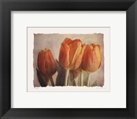 Bellezza I - Mini Framed Print