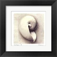 Sea Shapes III - Mini Framed Print