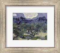 Framed Olive Trees, 1889
