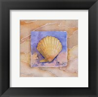 Framed Scallop - Mini
