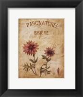Framed Parcnaturel I - Mini