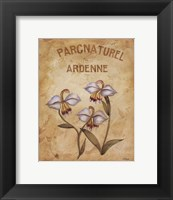 Framed Parcnaturel II - Mini