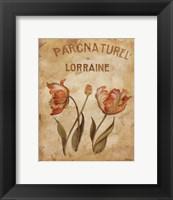 Framed Parcnaturel III - Mini