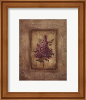 Framed Savin Lilac - Mini