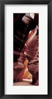 Framed Antelope