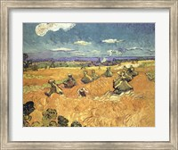 Framed Harvest in Provence of Wheat Field with Sheaves, c.1888