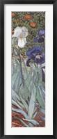 Framed Irises in the Garden, Saint-Remy, c.1889 (detail)