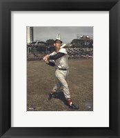 Framed Ted Williams - Posed Batting