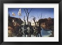 Framed Swans Reflecting Elephants, c.1937