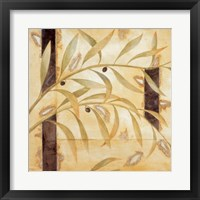 Framed Olive Branch II