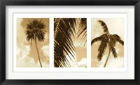 Framed South Beach Palms