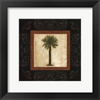 Sago Palm Framed Print