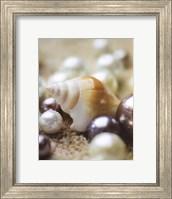 Framed Sea Jewels I