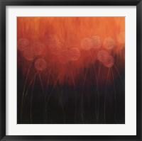Framed In Full Bloom II