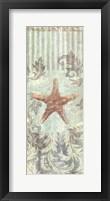 Seaside Heirloom II Framed Print