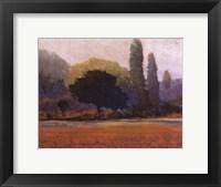 Framed Campana