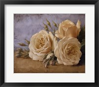 Framed Roses From Ivan