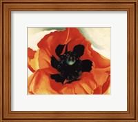 Framed Poppy, 1927