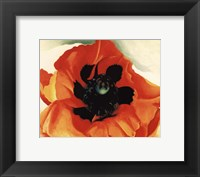 Framed Poppy, 1927