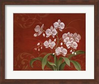 Framed Say it with Orchids II