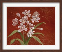 Framed Say it with Orchids I
