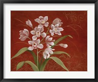 Say it with Orchids I Framed Print