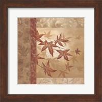 Framed Japanese Maple I