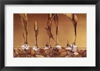 Framed Gilden Tulips