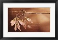 Framed Thacker's Tree And Flight