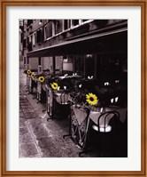 Framed Sunflower Cafe