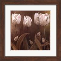 Framed Sepia Tulips II