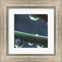 Framed Rain