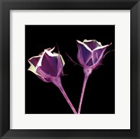 Framed Electric Flowers No. 1