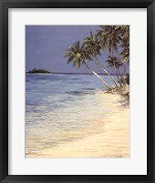 Tropical Inlet Framed Print