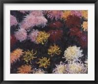 Framed Chrysanthemum, 1897 - close up