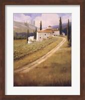 Framed Tuscany Vineyard