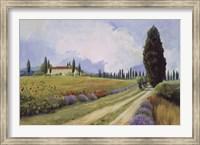 Framed Holiday in Tuscany