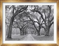Framed Oak Arches