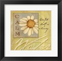 Framed Calm - Daisy