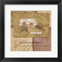 Happiness - Orchid Framed Print