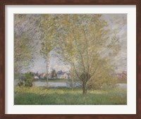 Framed Willows of Vetheuil