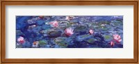 Framed Water Lilies (blue and purple)